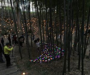 竹灯籠まつり