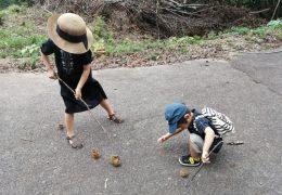下米田さくらの森